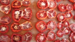 sun died tomatoes
